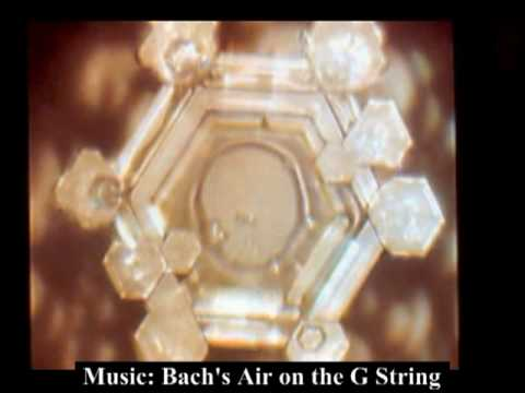 Masaru Emoto: Water Is Life