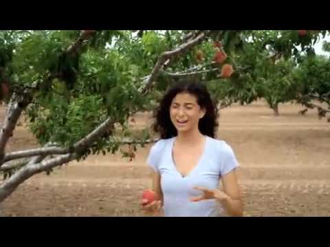 Kristina Carrillo-Bucaram: The Rawfully-Organic Co-op: A Trip To Gundermann Farm!