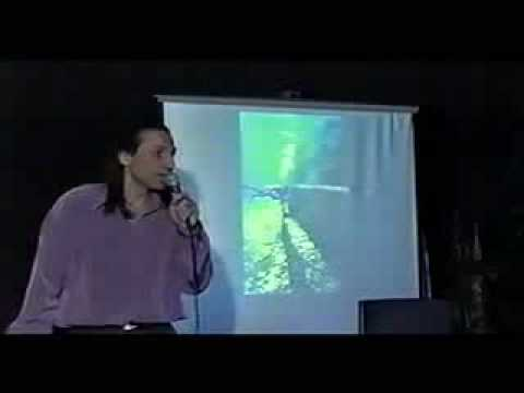 Nassim Haramein:  Odyssey Into Hyperspace And Beyond (28 of 45)