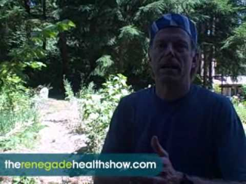 KevinAnnMarie Gianni: How to Make a Food Forest with Suburban Permaculture