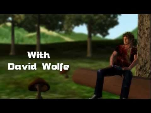 David Wolfe -The Magic Of Mushrooms - Phoenix Voyage