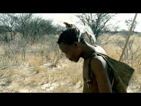 David Attenborough - African Kalahari Desert Kudu Persistence Hunt