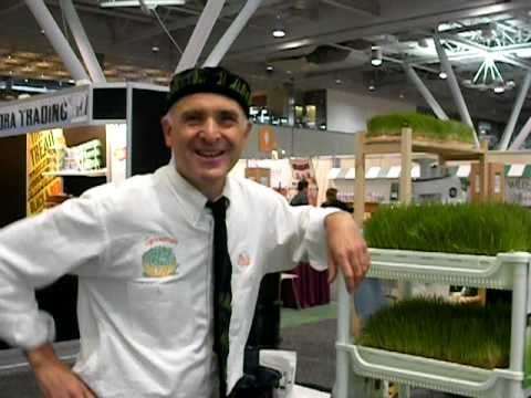 steve The Sproutman: Wheatgrass Grower